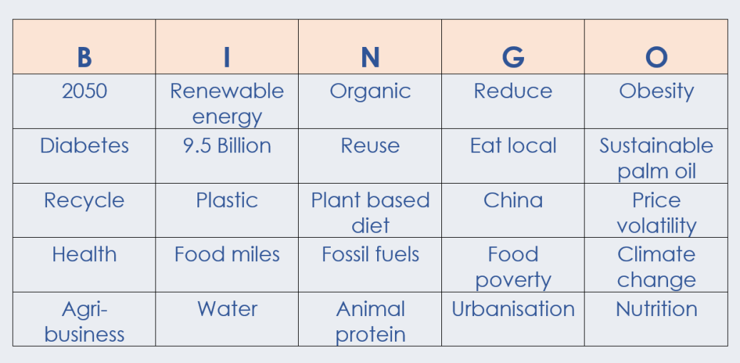Sustainability BINGO